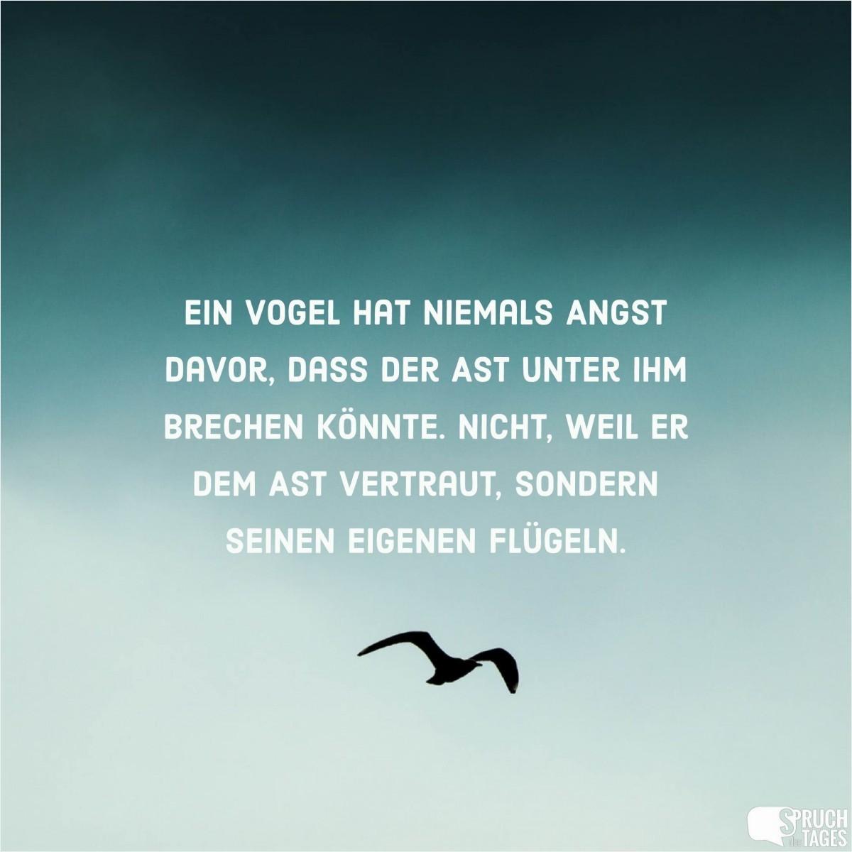 Image Result For Zitate Und Aphorismen Leben