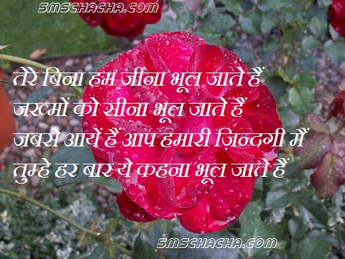 I Love You Quotes Hindi Sms