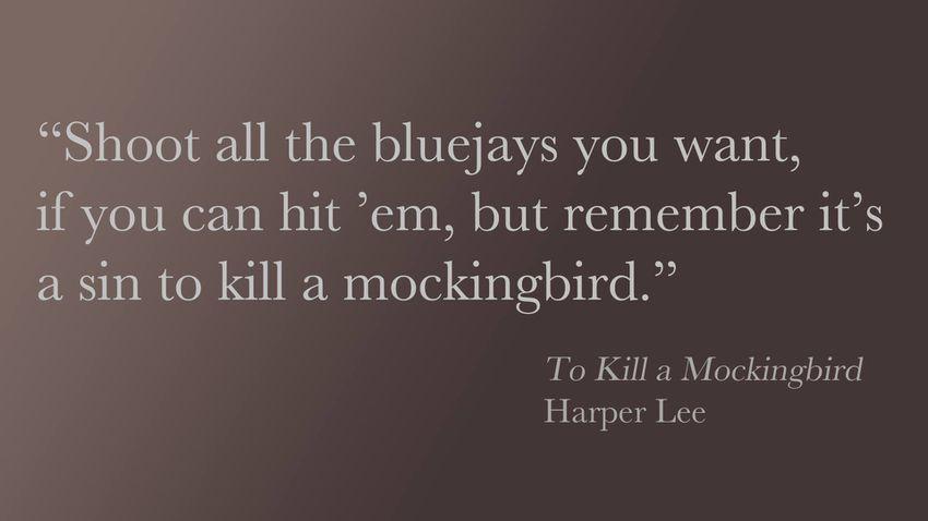 Popular Book Quotes