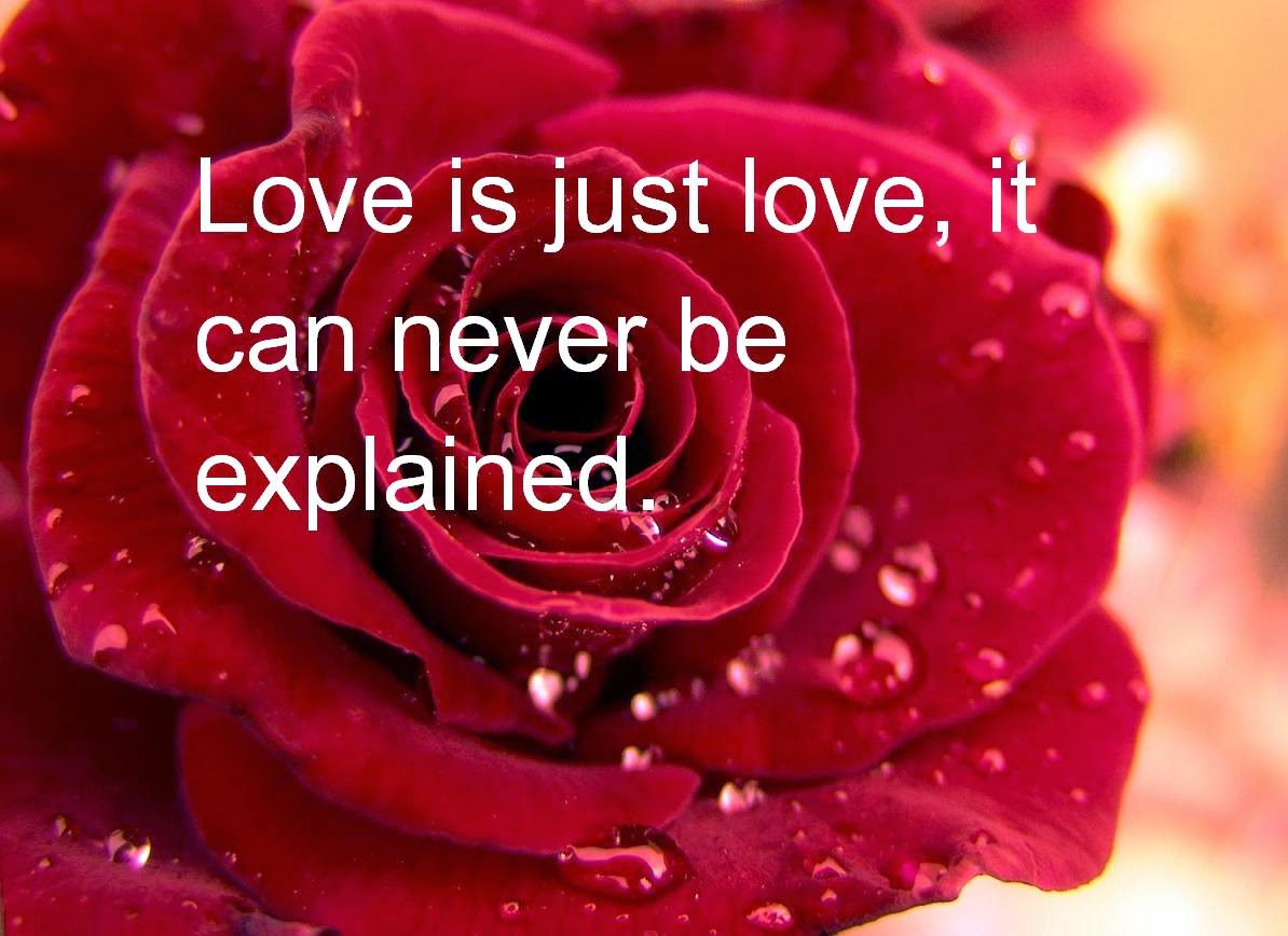 Love Is Just Love Never Can Be Explained