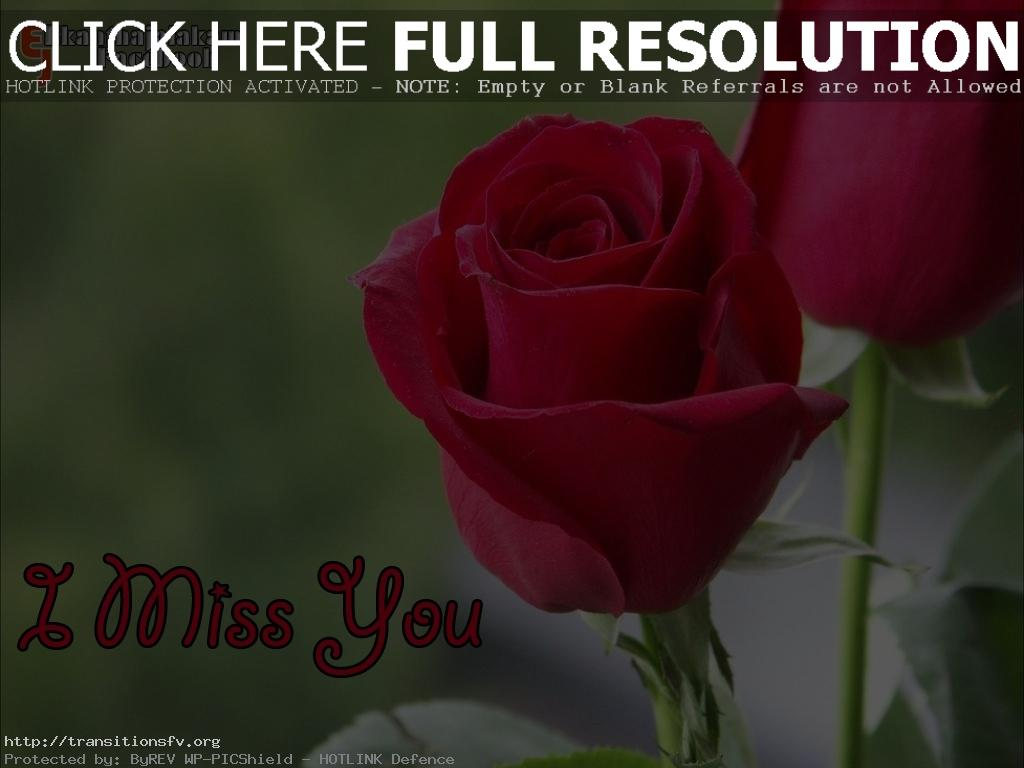 Love Quotes And Flowers Red Rose Malayalam Bouquet Idea Tearing Beautiful