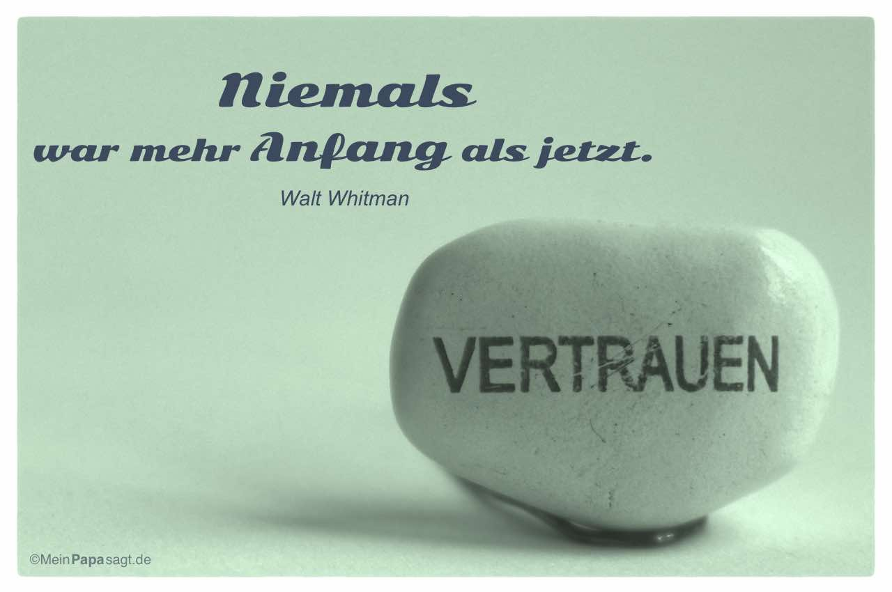 Image Result For Zitate Des Platon