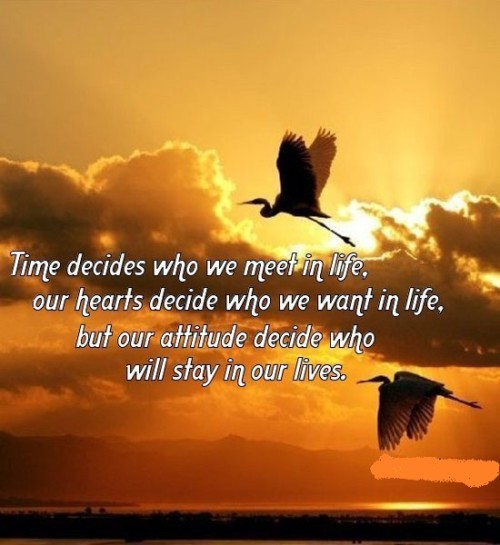 Time Decides Merry Christmas Love Quotes