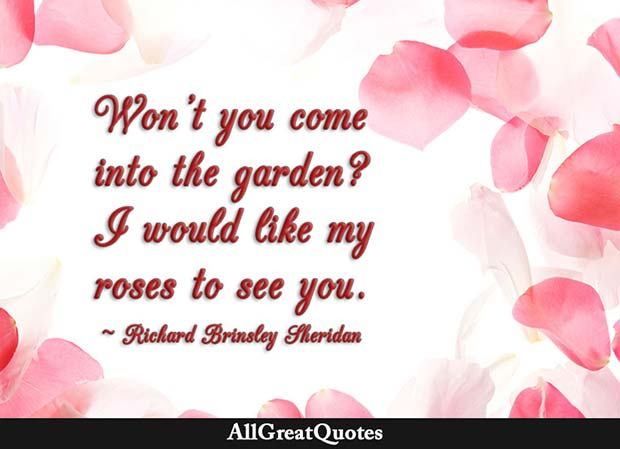 Like My Roses To See You Quote Richard Brinsley Sheridan