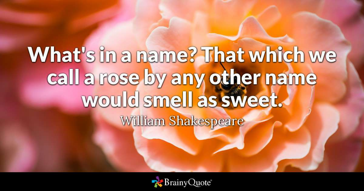 Quote Whats In A Name That Which We A Rose By Any Other Name Would