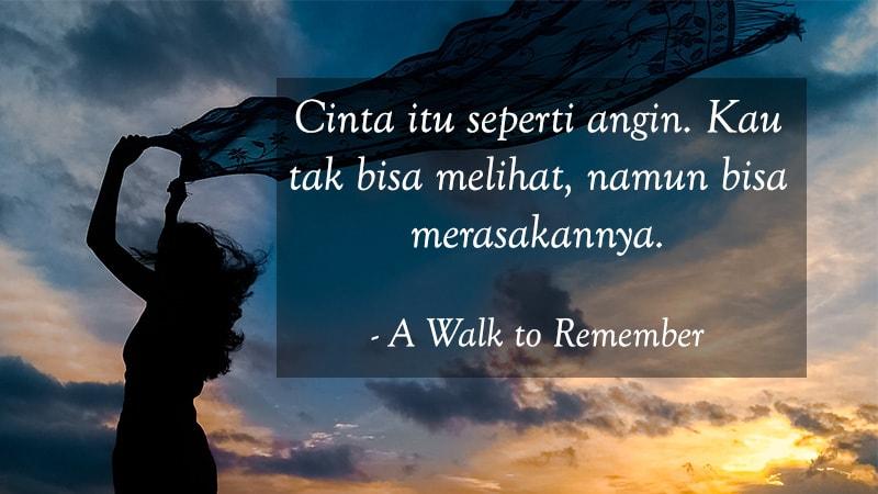 Kata Kata Cinta Bijak Romantis A Walk To Remember
