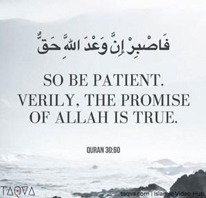 Kata Bijak Dalam Islam Dalam Bahasa Inggris Katakan Cintamu