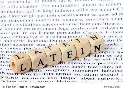 Besten Lateinischen Weisheiten In Einer Sammlung Lateinische Lebensweisheiten Und Lebensregeln Mit Deutscher Ubersetzung
