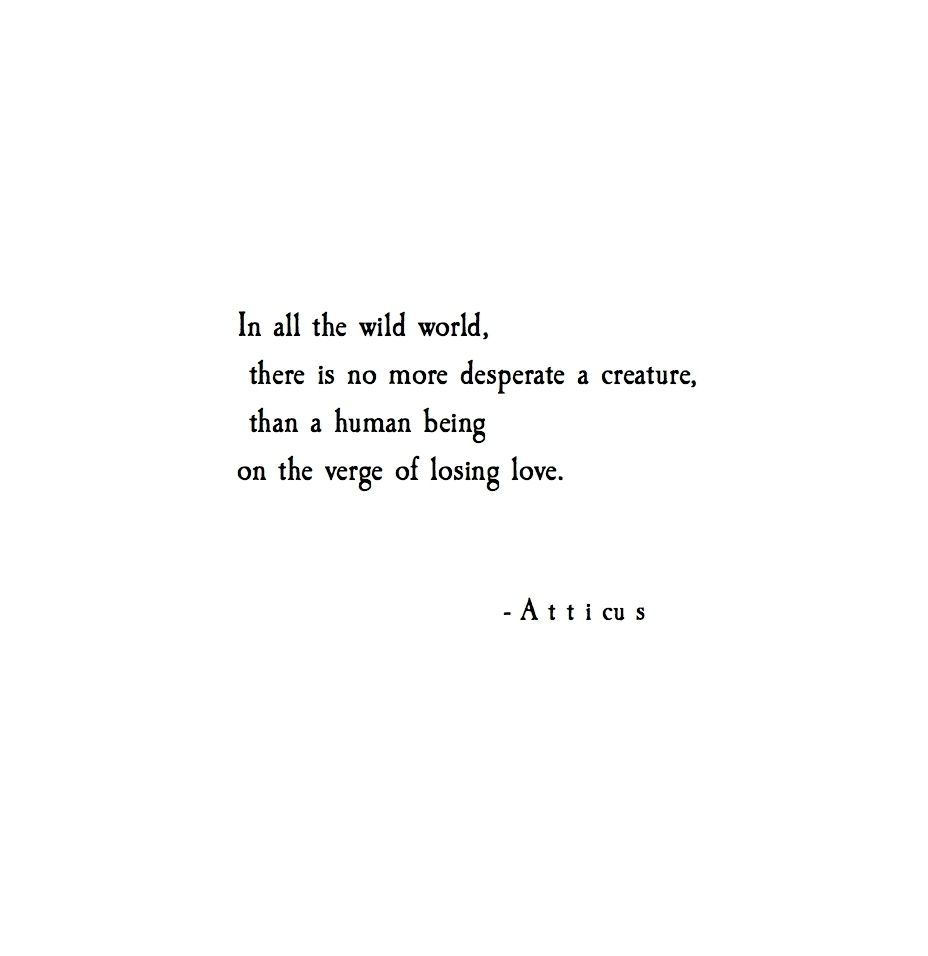 In All The Wild World There Is No More Desperate Creature Than A Human Being On The Verge Of Losing Love Atticus