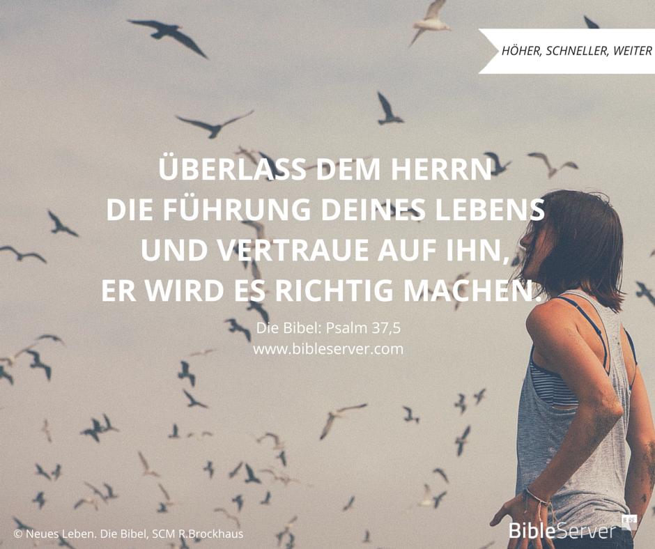 Wegweisung Fur Dein Leben Bibelvers Nachlesen Auf Bibleserver Psalm   C B Christliche Zitatechristliche