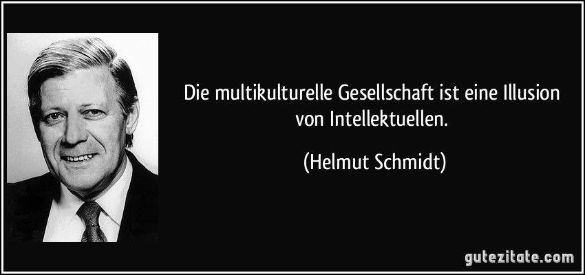 Multikulturelle Gesellschaft Ist Eine Illusion Von Intellektuellen Helmut Schmidt