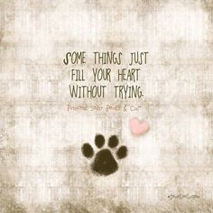 Dogs Are The Bestad This Would Be Cute If You Made Your Own On Canvas And Used Your Dogs Actual Paw Print And Then Have His Memory Forever
