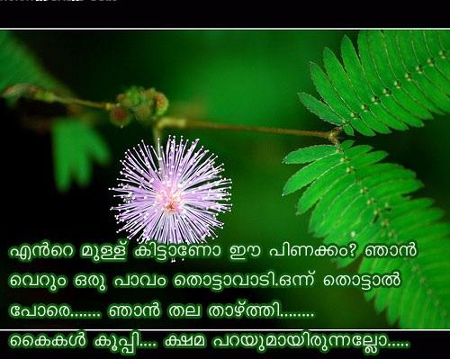 Sneham Malayalam Quotes