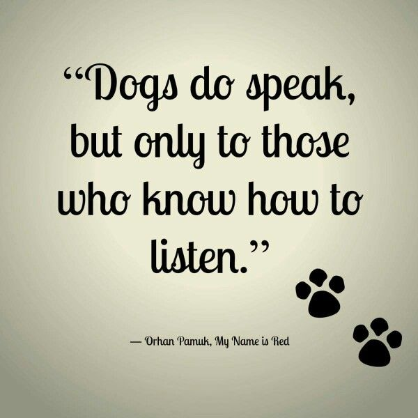 Quote Dog Communication Dogs Do Speak But Only To Those Who Know How To Listen