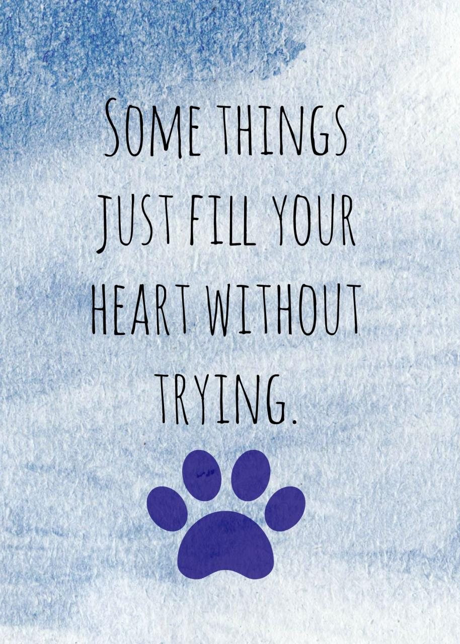 Dog Quote Saying Www Fordogtrainers