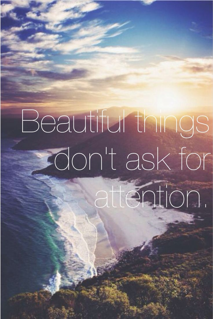 Beautiful Things Dont Ask For Attention Taken From The Secret Life