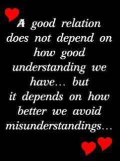 A Good Relationship Does Not Depend On How Good Of An Understanding We Have But It Depends On How Better We Avoid Misunderstandings