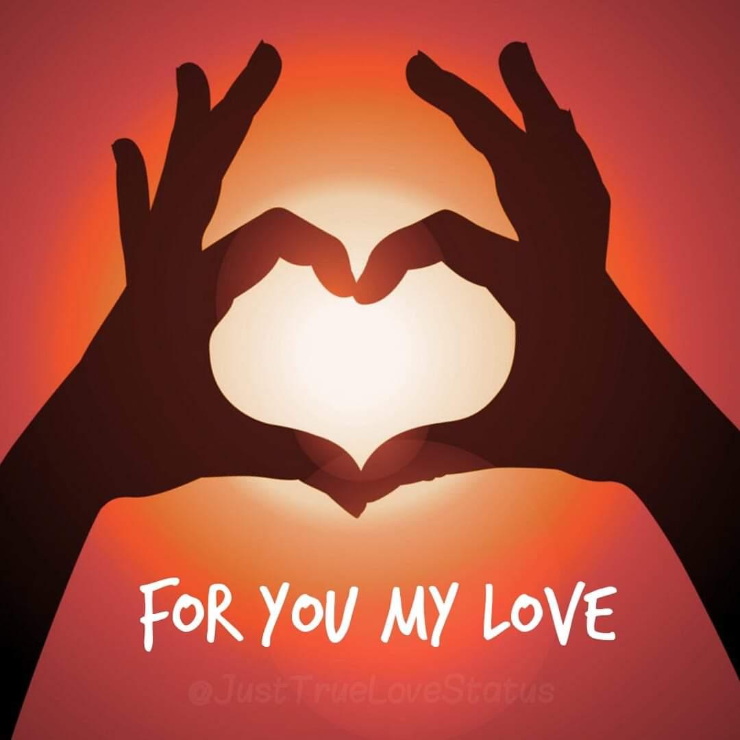 Whatsapp Love Status Dp Images Quotes Messages Socialstatusdp Com