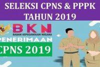 Penerimaan CPNS 2019 dan PPPK (P3K), simak jadwal pendaftaran, rincian formasi, tenaga prioritas, serta info BKN.