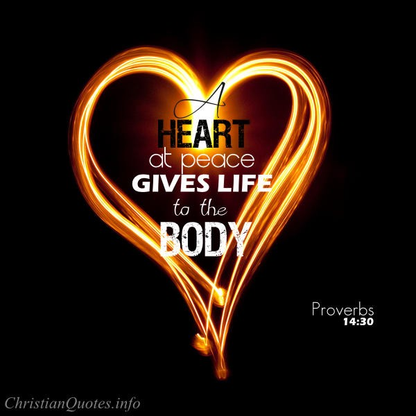 Proverbs  Bible Verse Life To The Body