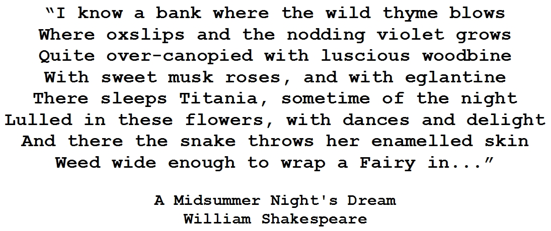 A Midsummer Nights Dream Quote