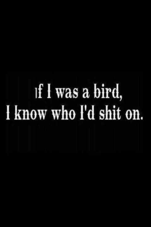Funny Quotes You Will Absolutely Love