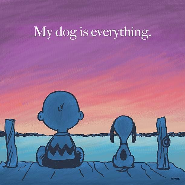 My Dog Is Everything Love Quotes Quote Charlie Brown Dog Snoopy Pets