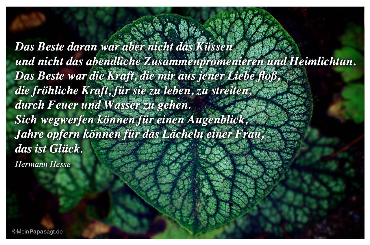 Herzformiges Pflanzenblatt Mit Dem Zitat Das Beste Daran War Aber Nicht Das Kussen Und Nicht