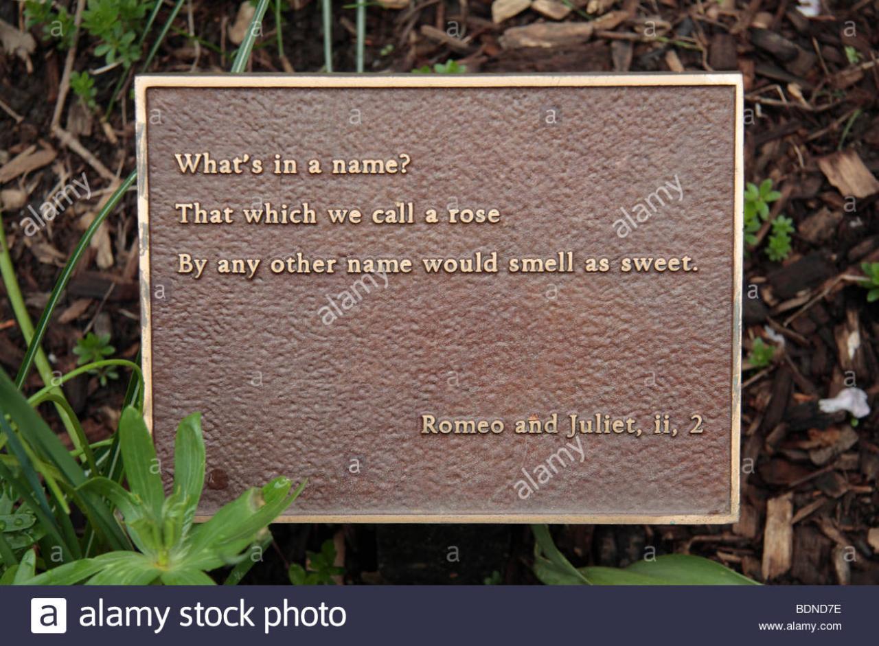 Ein Zitat Aus Romeo Julia In Ein Blumenbeet Im Garten Shakesphere Central