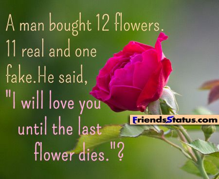 Rose For My Love