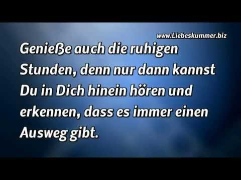 The Top Most Beautiful Birds Of The World In Hd  New Collection With Beautiful Quotes