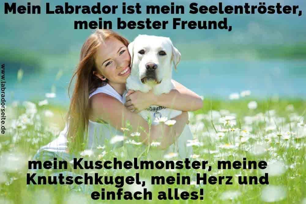 Mein Labrador Ist Mein Seelentroster Mein Bester Freund Mein Kuschelmonster Meine Knutschkugel Mein Herz Und Einfach Alles