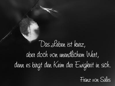 Herbstblatt Schwarzweiss