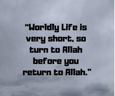 Islamic Quotes On Turn To Allah