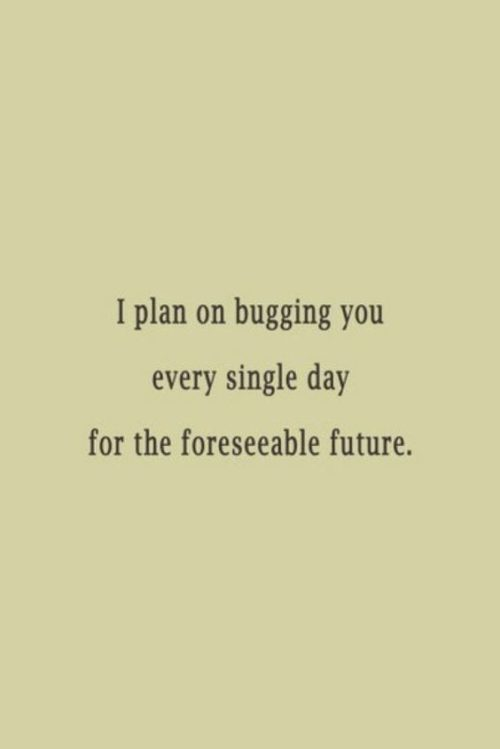 Funny Love Quotes Funny Love Quotes