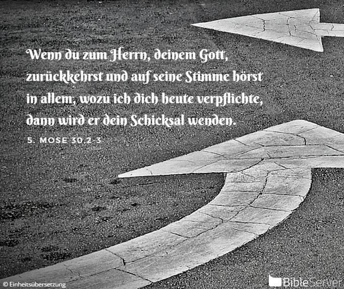 Nachzulesen Auf Bibleserver   Bibelversebibelvers Zitate Wortechristliche