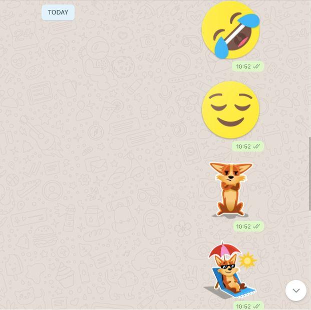 Dua Calon Fitur Baru WhatsApp Web