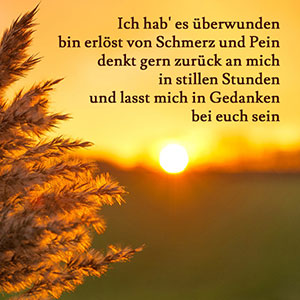 Image Result For Zitate Leben Prominente