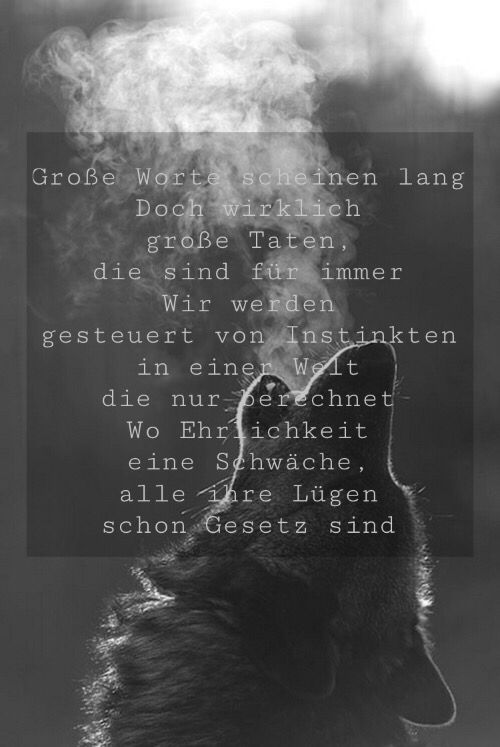 Image Result For Zitate Von Liedern Deutsch