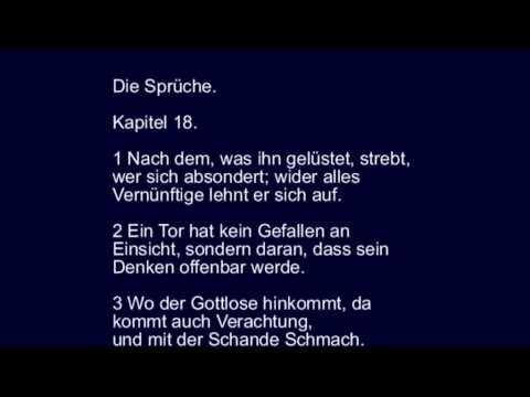 Spruche  Tod Und Leben Torheit Und Weisheit Armut Und Reichtum Youtube