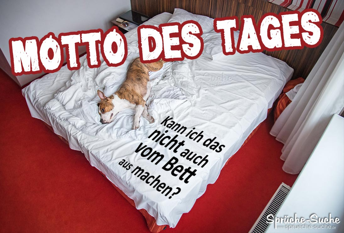 Image Result For Zitate Hund Trauer