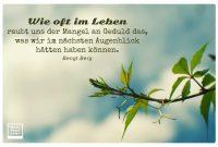 Image Result For Zitate Leben Im Augenblick