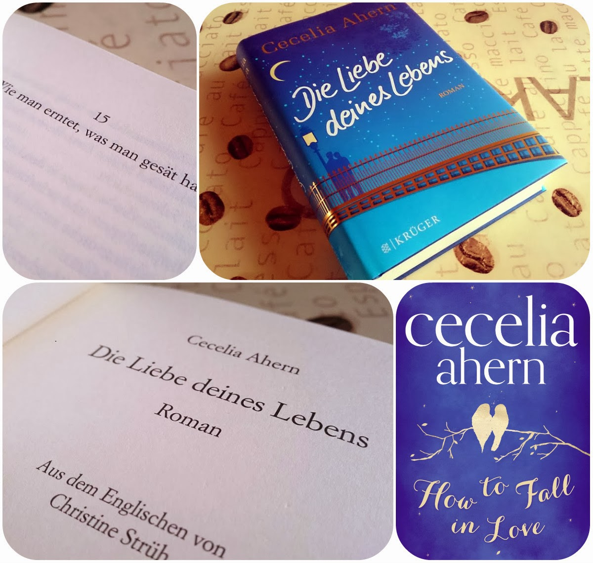 Originaltitel How To Fall In Love Autor Cecelia Ahern