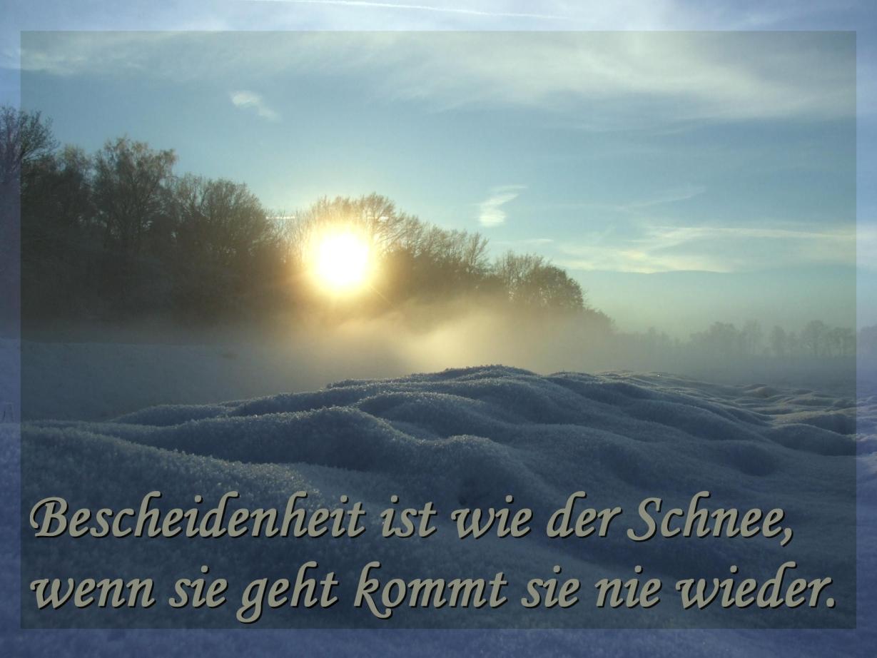 Weisheit Zitate Schnee Jens Bredehorn Pixelio De