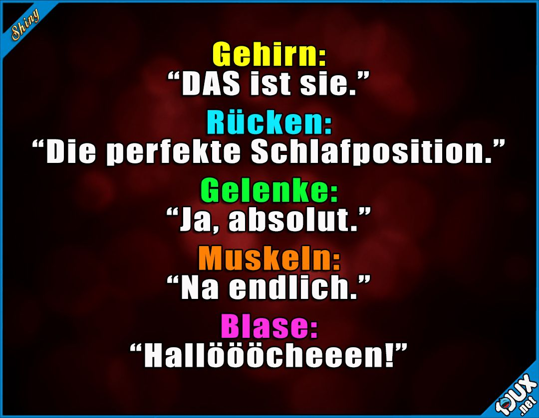 Image Result For Philosophie Lachen Zitate