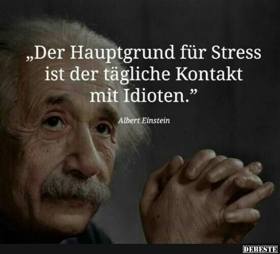 Stress Idioten Einstein