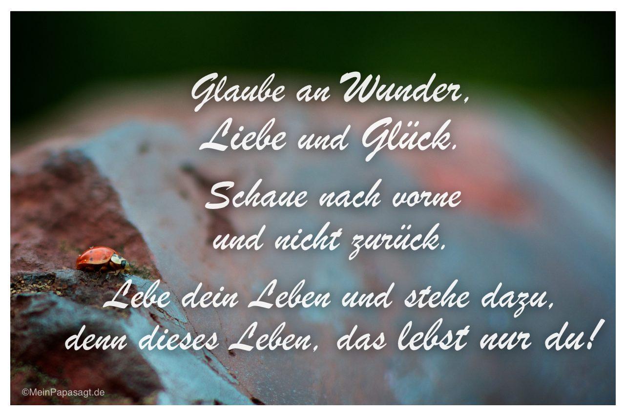 Marienkafer Auf Einem Stein Mit Dem Zitat Glaube An Wunder Liebe Und Gluck