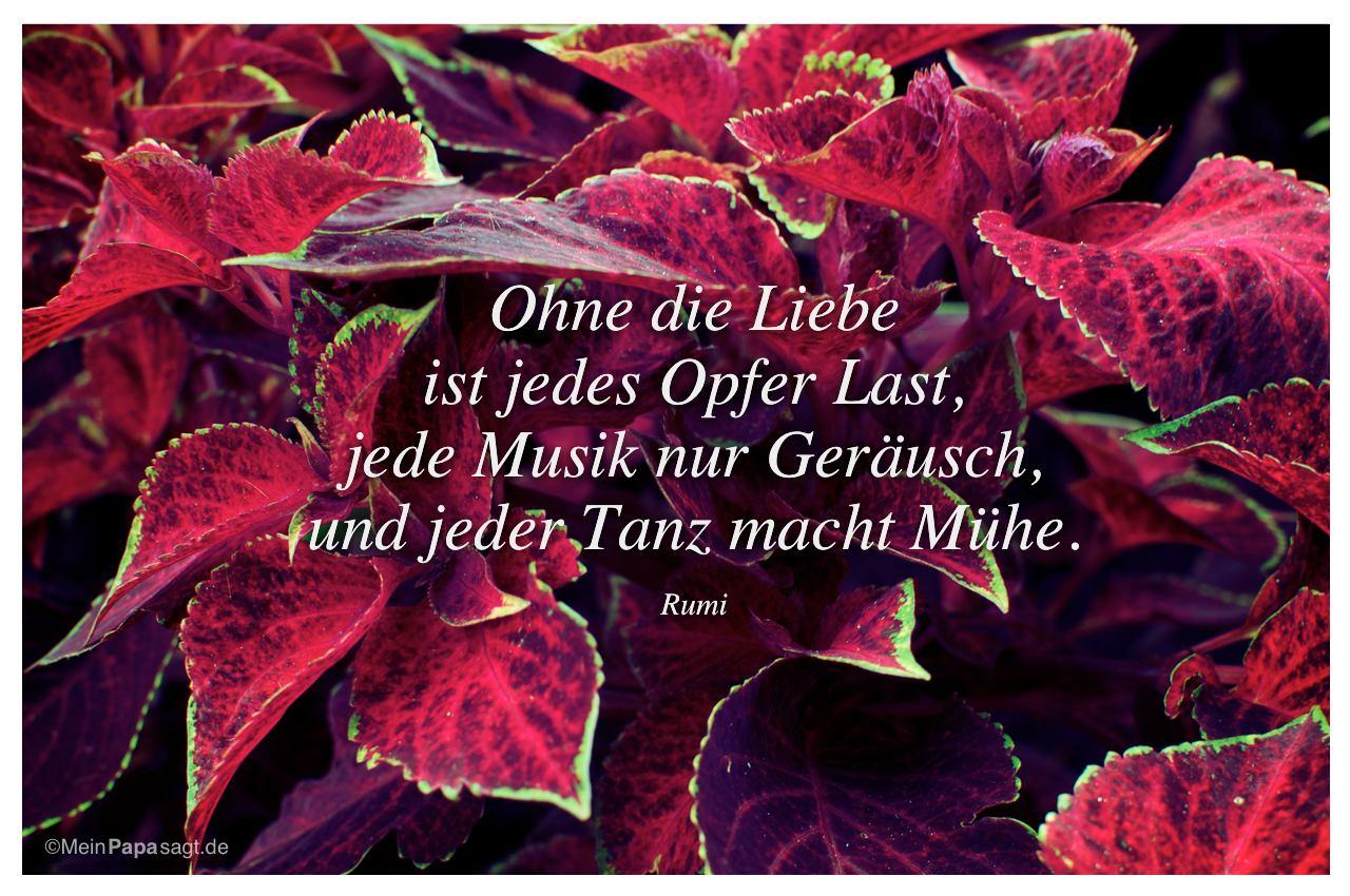 Image Result For Musik Zitate Zum Nachdenken