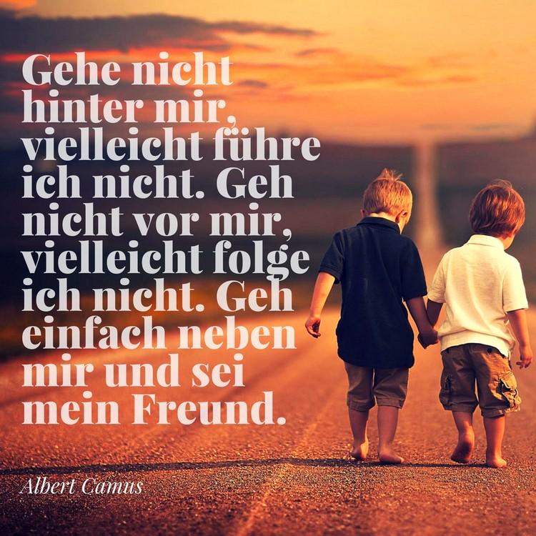 Zitate Freundschaft Freunde Spruche  Zitate Uber Freundschaft Und Freundschaftsspruche Fur Beste Freunde