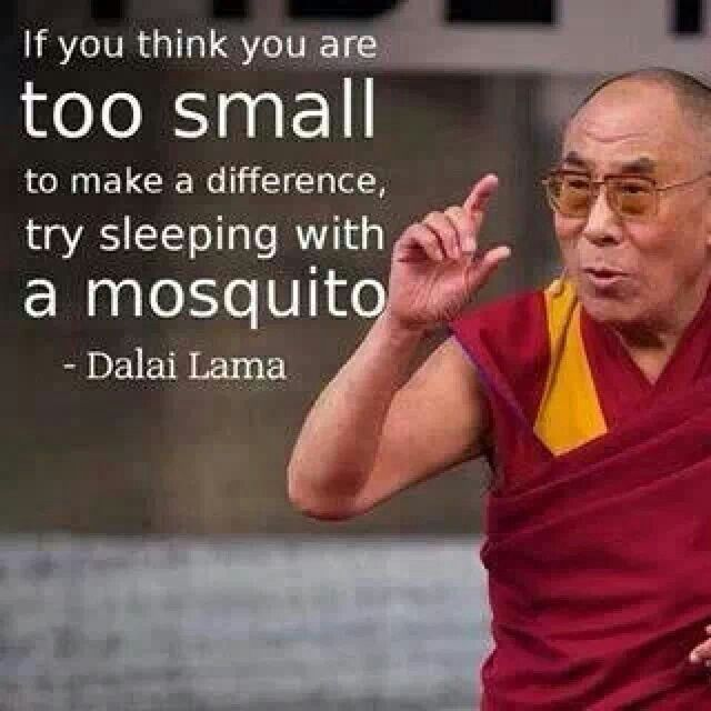 Wenn Du Glaubst Du Bist Zu Klein Um Einen Unterschied Aufser Welt Zu Machen Dann Versuche Zu Schlafen Wenn Ein Moskito Bei Dir Ist Dalai Lama